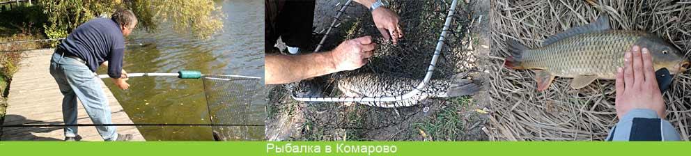 Рыбалка Винница